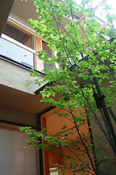 """Welcome to """"THE architecture"""". """"THE architecture"""" is a personal fan page about architect, Michimasa Kawaguchi. The features of Mr. Kawaguchi's architecture are a feeling of the material which moves daily, and the space with the essence of the real Japanese-style 和(Wa). This page introduces beauty and happiness through architecture ."""